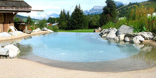 Проектирование технологической и строительной частей бассейнов и искусственных водоемов